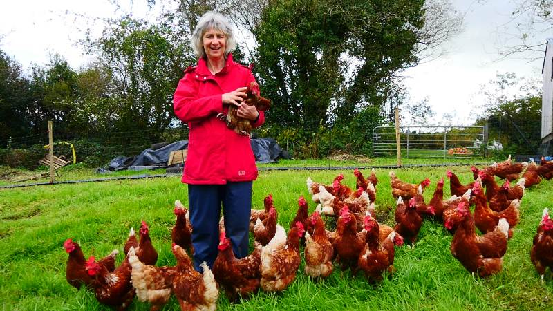 Alder Cottage Mary with her hens